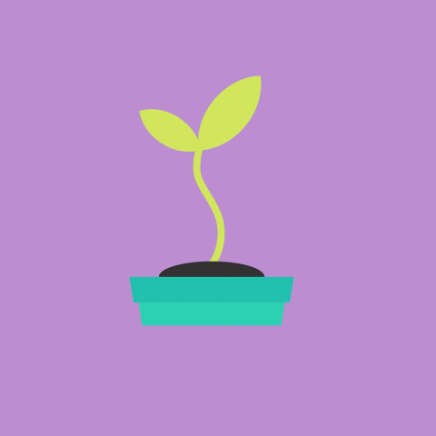 animation style picture of a green plant in pot